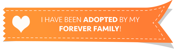 We found our forever family! Adopted in Lubbock